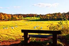 Campo de trigo después de una cosecha en la caída Imagenes de archivo
