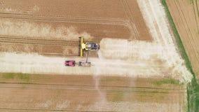 Campo de trigo e ceifeira de liga - vista aérea filme