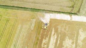 Campo de trigo e ceifeira de liga - vista aérea vídeos de arquivo