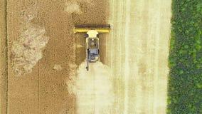 Campo de trigo e ceifeira de liga - vista aérea video estoque