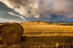 Campo de trigo de Toscana durante puesta del sol tempestuosa Fotografía de archivo libre de regalías