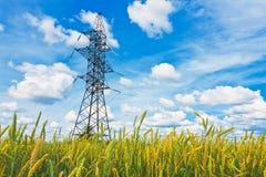 Campo de trigo y líneas eléctricas eléctricas Foto de archivo libre de regalías