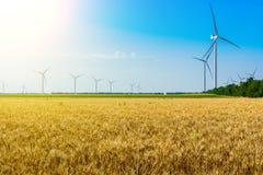 Campo de trigo y poder del eco, turbinas de viento Fotos de archivo libres de regalías