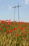 Campo de trigo y poder poste fotos de archivo