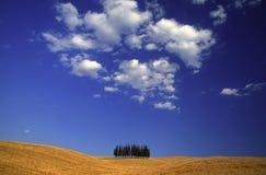 Campo de Tuscan Imagens de Stock Royalty Free