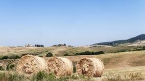 Campo de Tuscan Foto de Stock