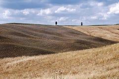 Campo de Tuscan Imagem de Stock