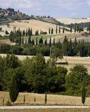 Campo de Tuscan Fotografia de Stock