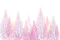 Campo de vetor do tremoceiro cor-de-rosa pastel do esboço ou do grupo Lupine da flor, botão e folhas ornamentados isolados no fun ilustração royalty free