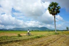 Campo de Vietnam Fotos de archivo