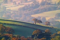 Campo de Yorkshire Imagens de Stock