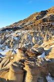 Campo dei calanchi di inverno Immagini Stock