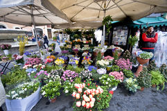 Campo dei Fiori justifying its name. The flowers at the central market of Rome Stock Images