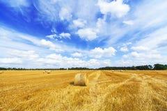 Campo dei mucchi di fieno e bello cielo blu Fotografia Stock Libera da Diritti