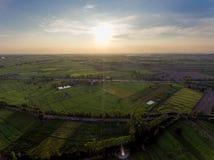 Campo del arroz en Asia Foto de archivo libre de regalías