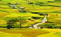 Campo del arroz en colgante en montaña. Imagenes de archivo