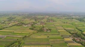 Campo del arroz y regi?n agr?cola en Indonesia metrajes