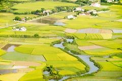 Campo del arroz y un pueblo Imágenes de archivo libres de regalías