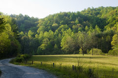 Campo del camino de la cerca de la mañana Fotografía de archivo