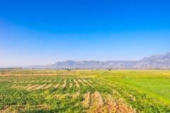 Campo del campo y cielo azul Foto de archivo