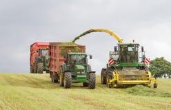 Campo del corte del forager de la máquina segador, ensilaje del cargamento en el tractor remolque dos Fotos de archivo