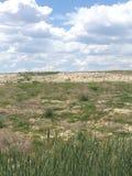Campo del deserto Immagine Stock