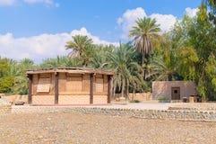 Campo del deserto della cabina di Reed palme Fotografia Stock Libera da Diritti