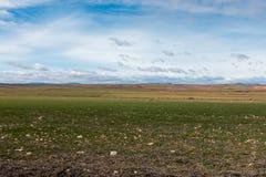 Campo del desierto en la provincia de Zaragoza Fotos de archivo libres de regalías