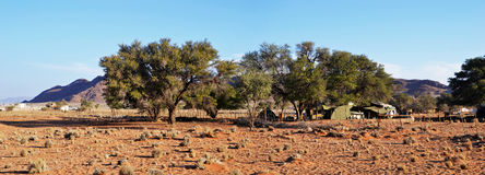 Campo del desierto en Namib Imagenes de archivo