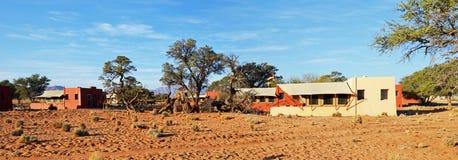Campo del desierto en Namib Fotos de archivo libres de regalías
