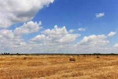 Campo del heno con los espacios en blanco para los animales del campo Foto de archivo