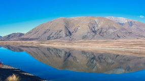 Campo del lago nel distretto dei laghi Ashburton, isola del sud, Nuova Zelanda fotografia stock