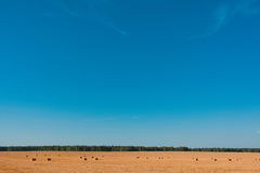 Campo del mucchio di fieno di agricoltura Fotografia Stock Libera da Diritti