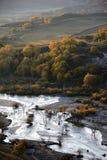 Campo del otoño con la corriente y los árboles de abedul de oro Imagen de archivo