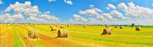 Campo del paese Fotografie Stock