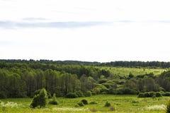 Campo del paisaje Imagen de archivo libre de regalías
