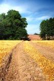 Campo del paisaje del verano Fotos de archivo libres de regalías