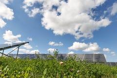 Campo del pannello solare Fotografia Stock