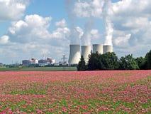 Campo del papavero e della centrale atomica, Temelin Immagini Stock Libere da Diritti