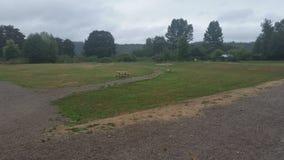 Campo del parco Immagini Stock