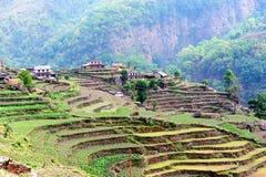 Campo del paso de progresión, colina de Poon, Nepal Fotos de archivo libres de regalías