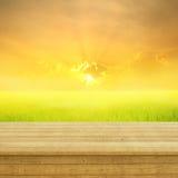 Campo del pavimento di legno tramonto gialli e verdi del riso e per fondo Fotografia Stock