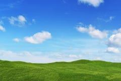 Campo del prado y cielo azul Fotografía de archivo