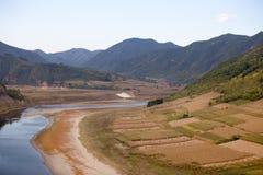 Campo del río y de maíz Fotografía de archivo