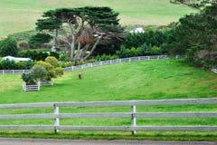 Campo del recinto en la colina Imágenes de archivo libres de regalías