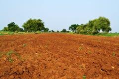 Campo del suolo Fotografie Stock