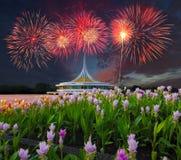 Campo del tulipano del Siam, bella costruzione con il riflesso sul lagoo fotografie stock libere da diritti