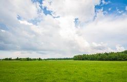 Campo del verano, scape masivo del cielo Imágenes de archivo libres de regalías