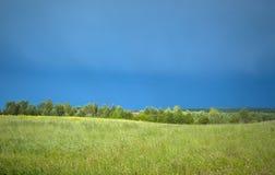 Campo del verde de pueblo con los arbustos después de una tormenta Foto de archivo