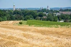 Campo del viñedo y de la cosecha con el cielo azul Imagen de archivo